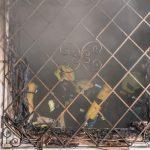 Wohnhausbrand Raach